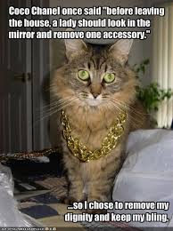 Coco Chanel Meme - coco chanel once said before leaving the house a lady should look
