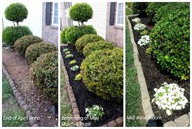 focal point styling weekend gardening landscaping improvements