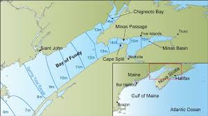 map of ta bay map of the gulf of maine and bay of fundy showing tidal range
