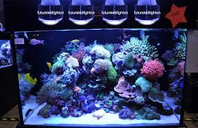 best lighting for corals 2pcs lot usa best sell product 100w aquarium lighting led coral grow