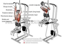 barbell bench press a compound exercise use it along with the