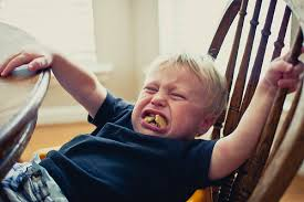 Tantrum Meme - 50 hilarious reasons why toddlers chuck tantrums