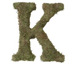 Letters For Home Decor Amazon Com Lillian Rose Moss Letter For Home Decor 15 Inch
