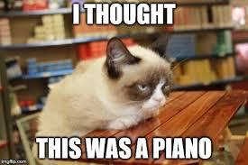 grumpy cat table meme imgflip