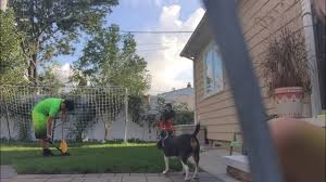playing soccer in our backyard youtube