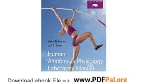 Human Anatomy Physiology Laboratory Manual Pdf Human Anatomy And Physiology Laboratory Manual Fetal Pig Version