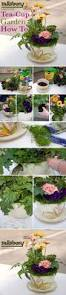 best 25 indoor mini garden ideas on pinterest terrarium making
