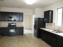 modern kitchen dark cabinets nice modern kitchen with black appliances home design ideas