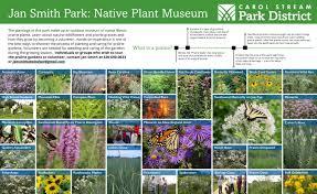 native plants to illinois jan smith park carol stream park district