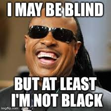 May Meme - i may be blind imgflip