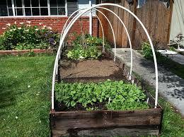 awesome vegetable gardens for small spaces vegetable gardening in