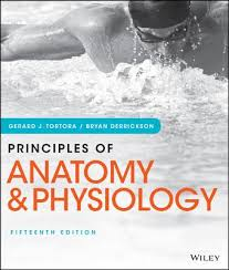 Anatomy And Physiology Pdf Books Principles Of Anatomy And Physiology Book By Gerard J Tortora 31