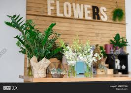 small business modern flower shop image u0026 photo bigstock
