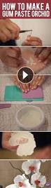Learn To Decorate Cakes At Home 230 Best Youtube Videos Images On Pinterest Desserts Tutorials