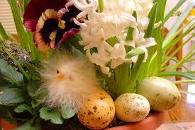 blog folsom and sacramento florist u2013 1 916 514 1276 u2013 fast