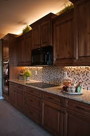 wood countertops kitchen cabinets with crown molding lighting