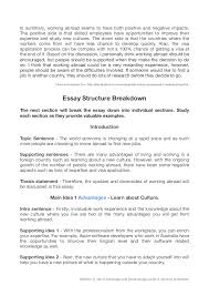 Resume For Work Abroad How To End An Informational Essay Professional Dissertation