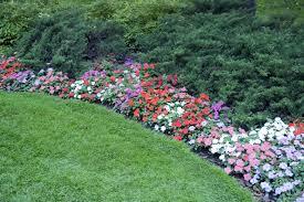 Shrub Garden Ideas Clever Backyard Shrub Garden Ideas Sublipalawan Style