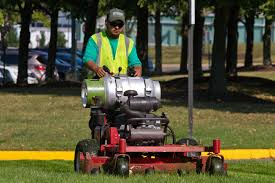 caring for lawns during times of drought hgtv