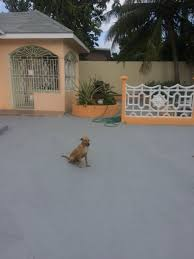 2 bedroom house for rent in kingston jamaica getpaidforphotos com