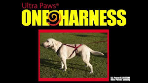 ultra paws one harness youtube