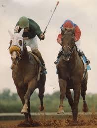 the brock talk horse racing u0027s st patrick u0027s day all stars