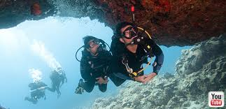 professional association of diving instructors padi