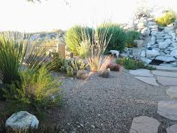 make simple fresh and modern drought tolerant landscaping