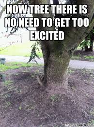 Tree Meme - tree meme 28 images trees be like the reason you breath make a