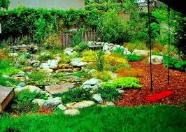 Drought Friendly Landscaping by Drought Tolerant Plant Ideas For Your Homestead