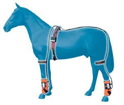 8 best horse therapy products images on pinterest horse therapy