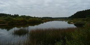 Medveditsa River