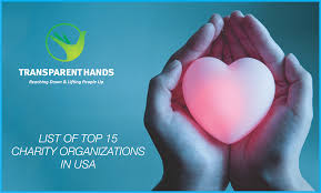 list of top 15 charity organizations in usa transparent