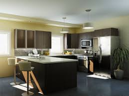 Price Kitchen Cabinets Online Conrad Kitchens Wholesale Price For High Quality Kitchen Cabinets