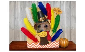 thanksgiving photo booth pilgrim photo booth portraits elmer s thanksgiving day