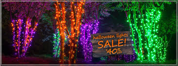 Outdoor Up Lighting For Trees Christmas Lights Christmas Trees U0026 Led Christmas Lights