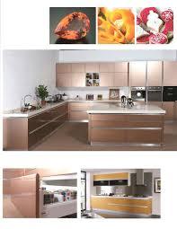 mini kitchen cabinet kitchen cabinets drywood termites in kitchen cabinets termite