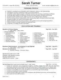 Personal Profile Resume Examples by Best Free Resume Sample And Writing Guides For All 2017 Top