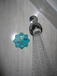 take 5 minute showers green lifestyle changes