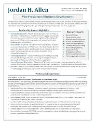 Sample Resume Templates For It Professional by Click Here To Download This Business Development Executive Resume