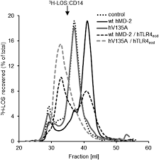 molecular basis of the functional differences between soluble