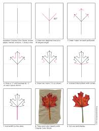 how to draw a maple leaf art projects for kids