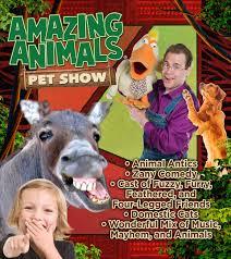 Comedy Barn In Pigeon Forge Tennessee Amazing Animals Pet Show