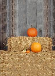 studio backdrops backdrops props tagged fall autumn backdrops gear