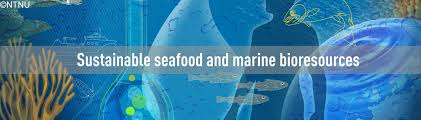 sustainable seafood and marine bioresources ntnu oceans ntnu