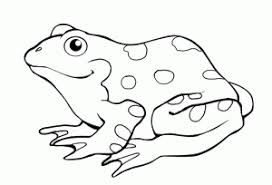 printable frog colouring pages for preschoolers coloring point