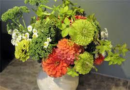 best zinnias for cutting gardener u0027s journal