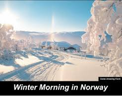 Norway Meme - some amazing facts winter morning in norway facts meme on