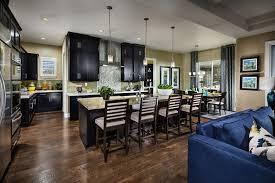 Kitchen With Black Cabinets 35 Luxury Kitchens With Dark Cabinets Design Ideas Designing Idea