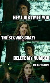Crazy Sex Memes - hey i just met you the sex was crazy delete my number and keep the